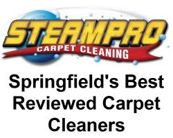 springfields best carpet cleaners